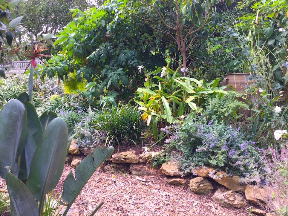Gardens and natural settings for your recovery