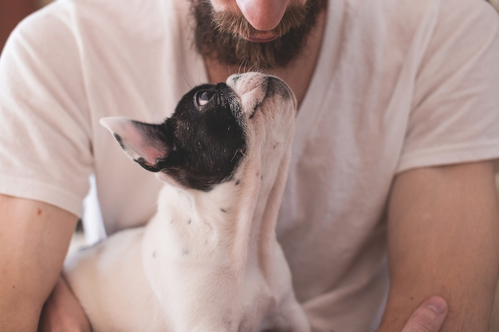 Friends with benefits: pets and other animals and wellbeing